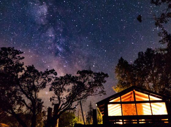 Hébergement insolite, cabane dans les arbres sous les étoiles